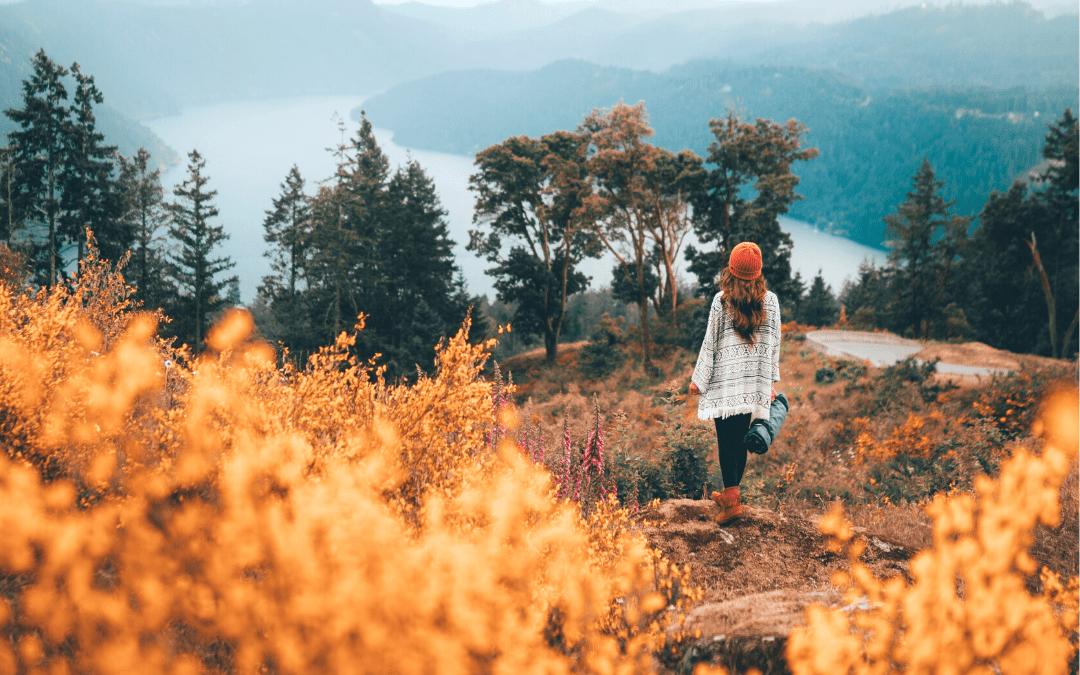 Fall In The Okanagan